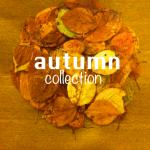 Autumn 【那須塩原市】